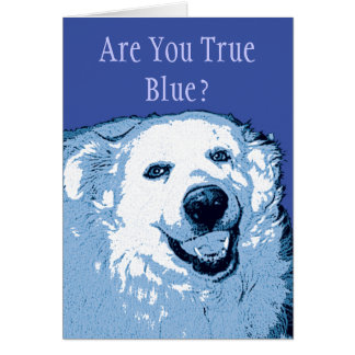 Blue Dog Democrats-Are You True Blue? Card