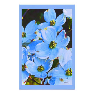 Blue Dogwood Stationery