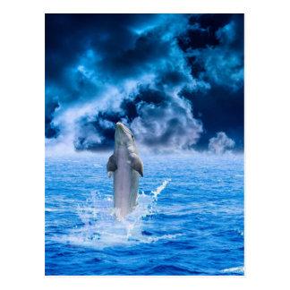 Blue Dolphin Jumping Postcard