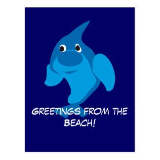 Blue Dolphin Postcard