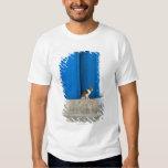 Blue door, Kairouan, Tunisia, Africa Shirt