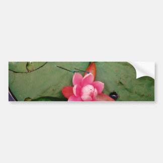 Blue Dragonflies on a pink lotus flower Bumper Stickers