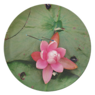 Blue Dragonflies on a pink lotus flower Party Plates