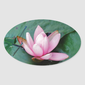 Blue Dragonflies on a pink lotus flower Oval Sticker