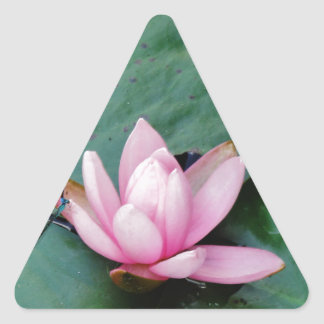 Blue Dragonflies on a pink lotus flower Triangle Sticker