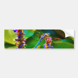 Blue Dragonfly and flowers Bumper Stickers