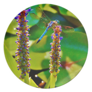 Blue Dragonfly and flowers Plate
