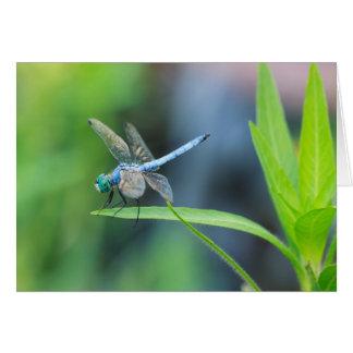 Blue Dragonfly Blank Greeting Card