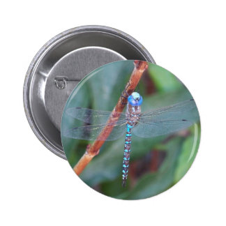 Blue Dragonfly Pinback Button