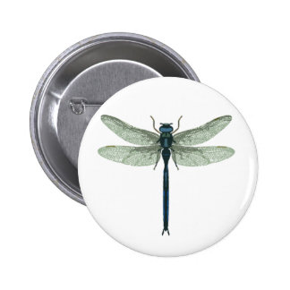 Blue Dragonfly Buttons