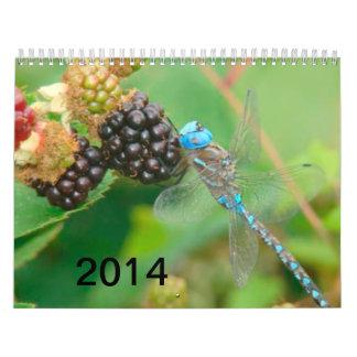 Blue Dragonfly Eating Raspberries Calendar