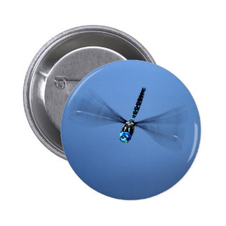 Blue Dragonfly in Flight Buttons