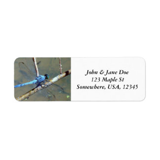 Blue DragonFly Label