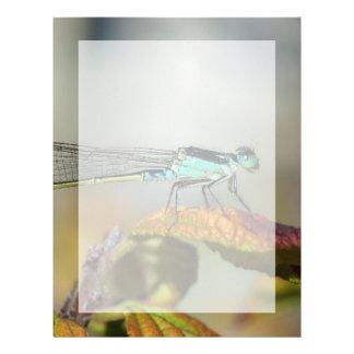 Blue Dragonfly Customized Letterhead