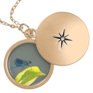 blue dragonfly locket necklace