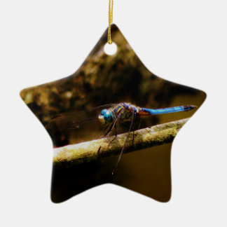 Blue Dragonfly on a brown limb. Double-Sided Star Ceramic Christmas Ornament