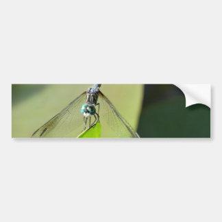 Blue Dragonfly on a green leaf. Bumper Sticker