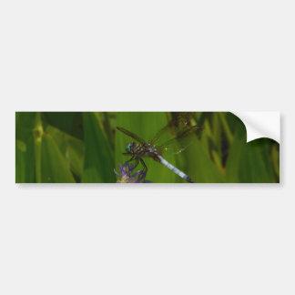 Blue Dragonfly on a Purple flower Bumper Stickers
