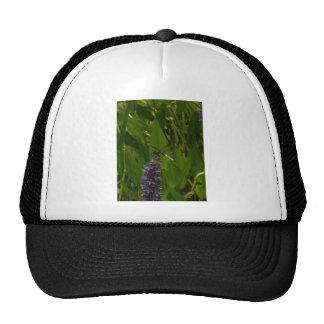 Blue Dragonfly on a Purple flower Trucker Hats