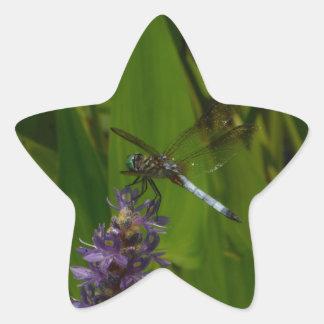 Blue Dragonfly on a Purple flower Star Sticker
