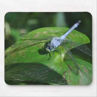 Blue dragonfly on green leaf mouse pad