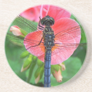 Blue dragonfly on pink flower green background drink coasters