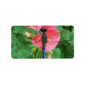 Blue dragonfly on pink flower green background label