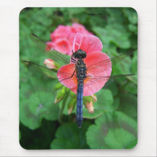 Blue dragonfly on pink flower green background mouse pad