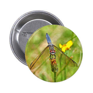 Blue Dragonfly Photo Pin
