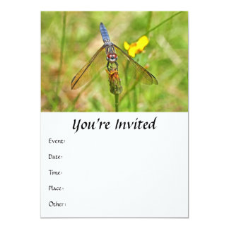 Blue Dragonfly Photo 5x7 Paper Invitation Card