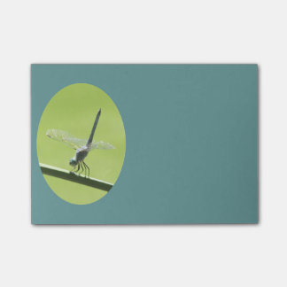 Blue Dragonfly Post-it® Notes