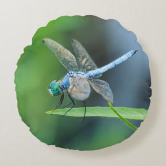 Blue Dragonfly Round Pillow