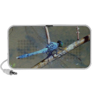Blue DragonFly Travelling Speakers