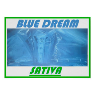 BLUE DREAM SATIVA POSTER