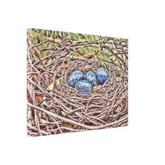 Blue Eggs In Nest Wrapped Canvas
