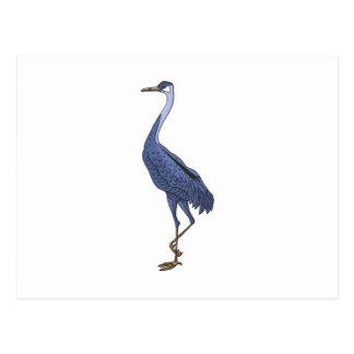 blue egret bird postcard