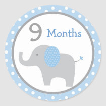 Blue Elephant Baby Boy Monthly Milestone Stickers