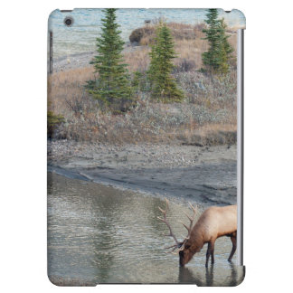 Blue Elk, Rocky Mountain Cover For iPad Air