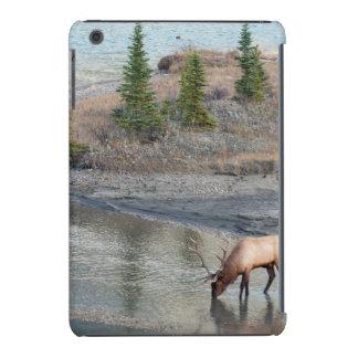 Blue Elk, Rocky Mountain iPad Mini Cover