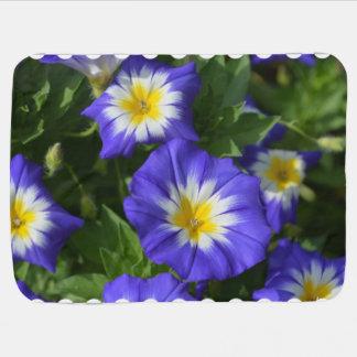 blue-ensign-morning-glory-10.jpg mantitas para bebé
