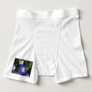 Blue Ensign Morning Glory Boxer Briefs