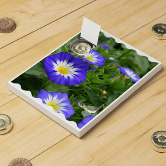 Blue Ensign Morning Glory Chocolate Countdown Calendars