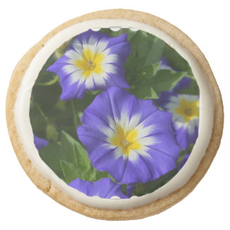 Blue Ensign Morning Glory Round Premium Shortbread Cookie
