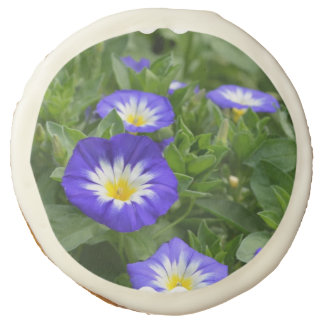 Blue Ensign Morning Glory Sugar Cookie