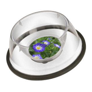 Blue Ensign Morning Glory Pet Bowl
