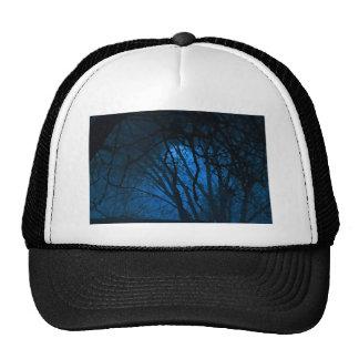 Blue Evening Trucker Hat