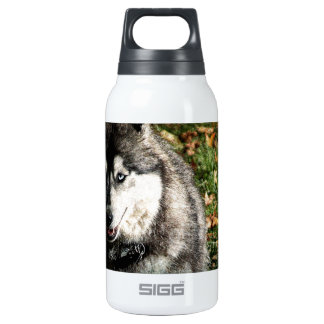 Blue Eye 10 Oz Insulated SIGG Thermos Water Bottle