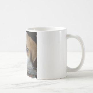 Blue Eye Puppy Coffee Mug