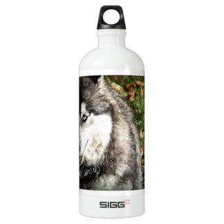 Blue Eye SIGG Traveler 1.0L Water Bottle