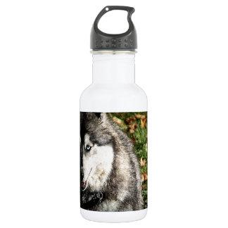 Blue Eye Stainless Steel Water Bottle
